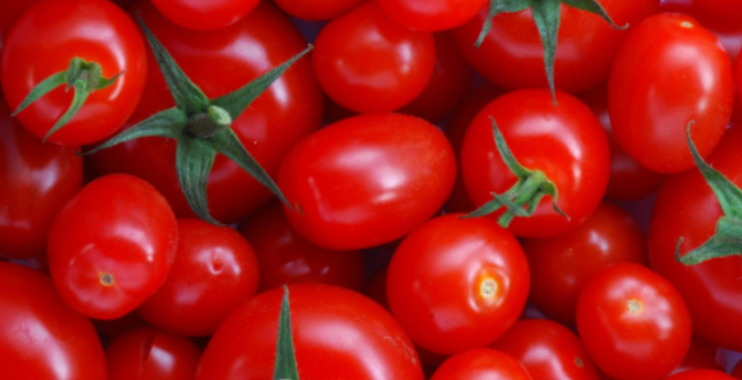 A new fully biodegradable plastic from tomato skin